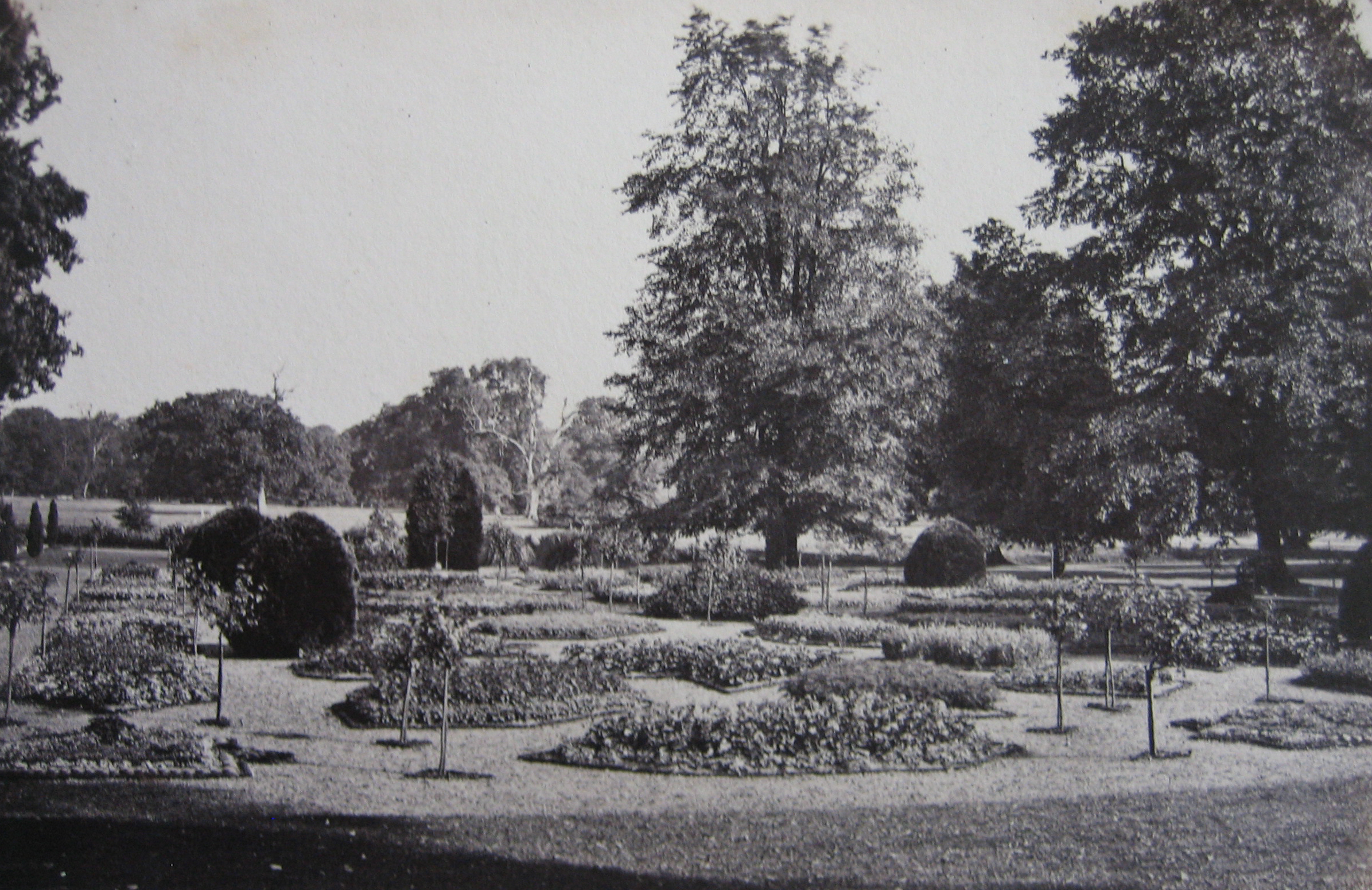 Photograph of the Flower Garden.