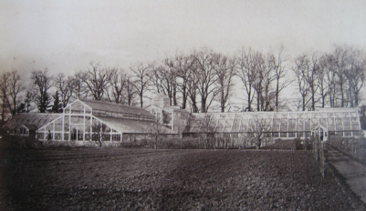 Photograph of the greenhouses.